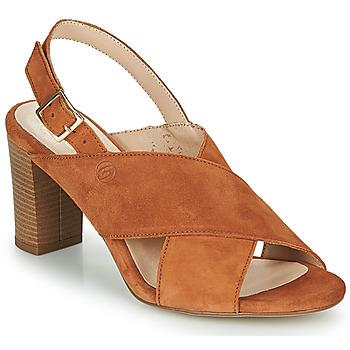 Παπούτσια Γυναίκα Σανδάλια / Πέδιλα Betty London MARIPOL Cognac