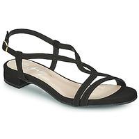 Παπούτσια Γυναίκα Σανδάλια / Πέδιλα Betty London MATISSO Black
