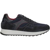 Παπούτσια Άνδρας Χαμηλά Sneakers NeroGiardini A901221U Blue