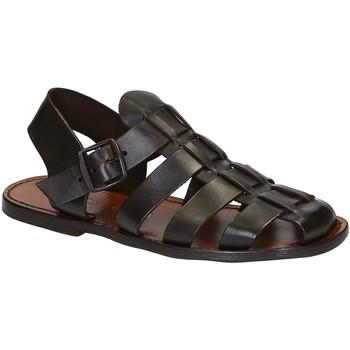 Παπούτσια Άνδρας Σανδάλια / Πέδιλα Gianluca - L'artigiano Del Cuoio 502 U MORO CUOIO Testa di Moro