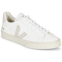 Παπούτσια Χαμηλά Sneakers Veja CAMPO Άσπρο / Grey