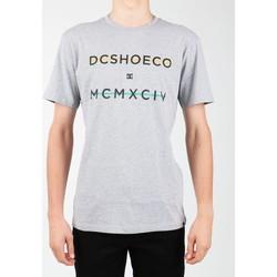 Υφασμάτινα Άνδρας T-shirt με κοντά μανίκια DC Shoes DC SEDYZT03760-KNFH grey