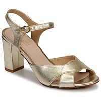 Παπούτσια Γυναίκα Σανδάλια / Πέδιλα André JESS Gold