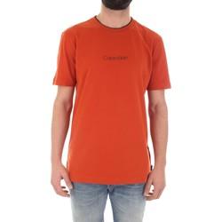 Υφασμάτινα Άνδρας T-shirt με κοντά μανίκια Calvin Klein Jeans K10K104934 Arancio