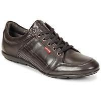 Παπούτσια Άνδρας Derby Levi's TOULON Brown
