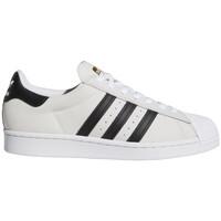 Παπούτσια Άνδρας Skate Παπούτσια adidas Originals Superstar adv Άσπρο