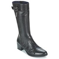 Παπούτσια Γυναίκα Μπότες Dorking LOLETA Black