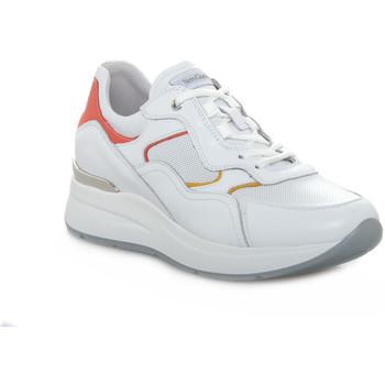 Παπούτσια Γυναίκα Χαμηλά Sneakers NeroGiardini 707 SKIPPER BIANCO Bianco