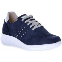 Παπούτσια Γυναίκα Χαμηλά Sneakers Grunland BLU CALL Blu