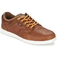 Παπούτσια Άνδρας Χαμηλά Sneakers Etnies DORY Brown