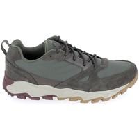 Παπούτσια Χαμηλά Sneakers Columbia Ivo Trail Kaki Grey