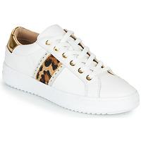Παπούτσια Γυναίκα Χαμηλά Sneakers Geox PONTOISE Άσπρο / Leopard