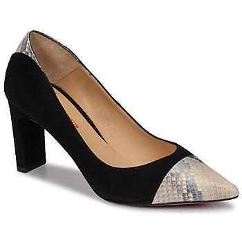 Παπούτσια Γυναίκα Γόβες Perlato JAMIRI Black / Beige