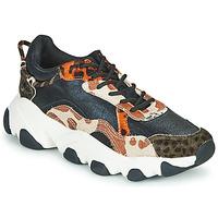 Παπούτσια Γυναίκα Χαμηλά Sneakers Gioseppo ALEKSIN Black / Orange
