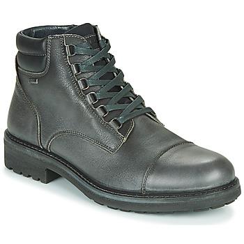 Παπούτσια Άνδρας Μπότες IgI&CO UOMO FREDDY GTX Grey