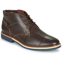 Παπούτσια Άνδρας Μπότες Lloyd  Brown