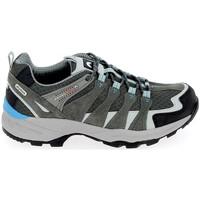 Παπούτσια Άνδρας Πεζοπορίας Elementerre Bardenas Gris Bleu Grey