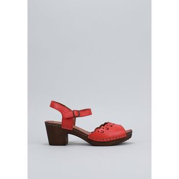 Παπούτσια Γυναίκα Σανδάλια / Πέδιλα Sandra Fontan  Red