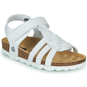 Παπούτσια Κορίτσι Σανδάλια / Πέδιλα Citrouille et Compagnie JANISOL Άσπρο