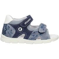 Παπούτσια Αγόρι Σανδάλια / Πέδιλα Balocchi 103161 Blue
