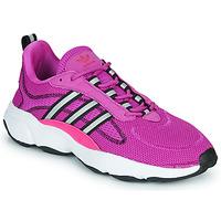 Παπούτσια Χαμηλά Sneakers adidas Originals HAIWEE W Violet