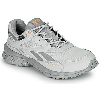 Παπούτσια Χαμηλά Sneakers Reebok Classic RIDGERIDER 5 GTX Grey