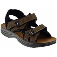 Παπούτσια Άνδρας Σανδάλια / Πέδιλα Inblu  Multicolour
