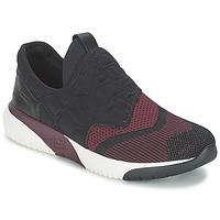 Παπούτσια Γυναίκα Χαμηλά Sneakers Ash SODA Bordeaux