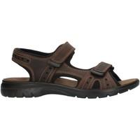 Παπούτσια Άνδρας Σπορ σανδάλια Imac 503370 Brown