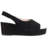 Παπούτσια Γυναίκα Σανδάλια / Πέδιλα Högl Pappilon Schwarz Sandals Black