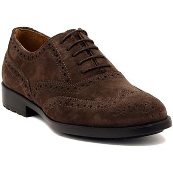 Παπούτσια Άνδρας Derby Marco Ferretti NEWPORT BROWN Multicolore
