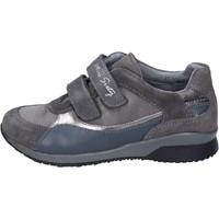 Παπούτσια Κορίτσι Χαμηλά Sneakers Miss Sixty sneakers camoscio tessuto Grigio