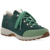 Παπούτσια Γυναίκα Πεζοπορίας Lomer BALI MTX PINE Verde