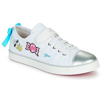 Παπούτσια Κορίτσι Χαμηλά Sneakers Geox JR CIAK FILLE Άσπρο / Silver