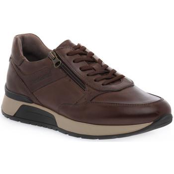 Xαμηλά Sneakers NeroGiardini NERO GIARDINI 300 NEOPOLIS MORO