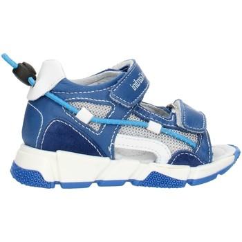 Παπούτσια Κορίτσι Σανδάλια / Πέδιλα NeroGiardini E023881M Blue