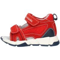 Παπούτσια Αγόρι Σανδάλια / Πέδιλα Nero Giardini E023880M Red