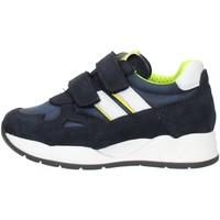 Παπούτσια Αγόρι Χαμηλά Sneakers Nero Giardini I023910M Blue