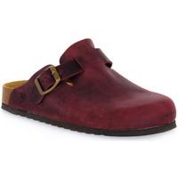 Παπούτσια Σαμπό Bioline 1900 VINO INGRASSATO Rosso