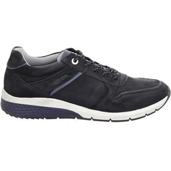 Παπούτσια Άνδρας Χαμηλά Sneakers Salamander Tonjo Black Black