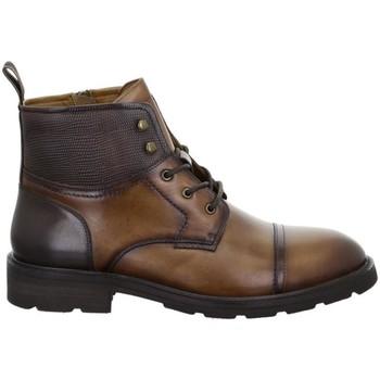 Παπούτσια Άνδρας Μπότες Salamander Modena Tan Brown Brown