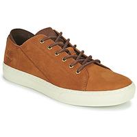 Παπούτσια Άνδρας Χαμηλά Sneakers Timberland ADV 2.0 CUPSOLE MODERN OX Cognac