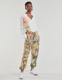 Υφασμάτινα Γυναίκα Παντελόνες / σαλβάρια Desigual TOUCHE Beige