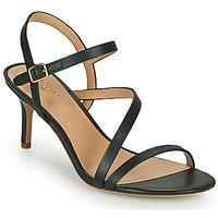 Παπούτσια Γυναίκα Σανδάλια / Πέδιλα Lauren Ralph Lauren LANDYN Black