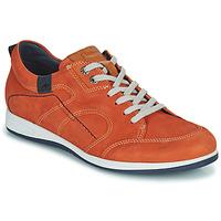 Παπούτσια Άνδρας Χαμηλά Sneakers Fluchos 9734-CRETA-CUERO Brown