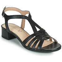 Παπούτσια Γυναίκα Σανδάλια / Πέδιλα Caprice 28201-022 Black