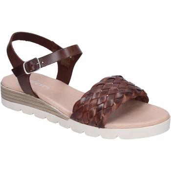 Παπούτσια Γυναίκα Σανδάλια / Πέδιλα Rizzoli BK607 καφέ