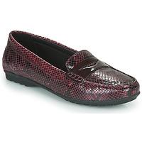 Παπούτσια Γυναίκα Μοκασσίνια Geox D ELIDIA Bordeaux