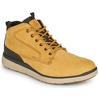 Παπούτσια Άνδρας Ψηλά Sneakers Geox U HALLSON Brown