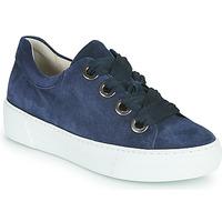 Παπούτσια Γυναίκα Χαμηλά Sneakers Gabor 6646446 Marine